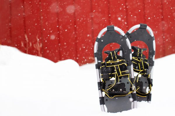 Riverdale Orchard Snowshoeing